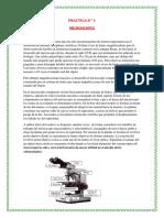 326788148-Introduccion-a-La-Microscopia (1).docx