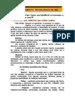Processamento_Tecnologico_de_Mel.doc