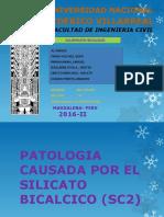 patologia_ocasionada_por_SC2[1]