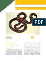 23-Micrurus sangilensis.pdf