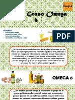 Acido Graso Omega 6
