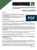 Tema 18 Organizaciones Internacionales