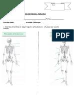 Control de Ciencias (Esqueleto)