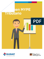 169514853_Carpeta virtual MYPE.pdf