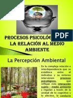 4 Procesos Psicológicos en Relación Al Medio Amb