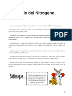 IV Bim - 1er. Año - Bio - Guía 5 - Ciclo Del Nitrogeno