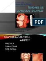 Gland_salivales - Rafael Cabiedes
