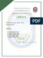 08 Informe Orga I..Lipidos