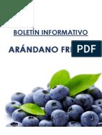 BOLETIN ARANDANO