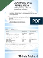 Eukaryotic DNA Replication(1)