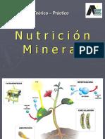 Teorico Practico - Nutrici n Mineral 2018