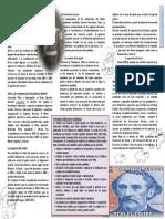 1 La Organizacion Nacional Mitre Texto