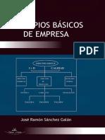 Principios basicos de empresa.pdf