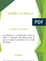 Siembra y La Semilla
