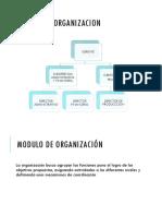 Modulo de Organizacion (1)