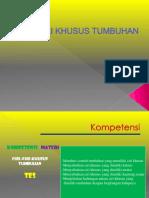 cirikhusustumbuhan-130412184709-phpapp01.pdf
