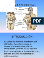endocrino.ppt
