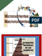 Presentación Micro y Macronutirentesa
