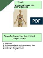 organizacion-funcional-del-cuerpo-humano-02-copia.ppt