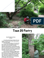 Team 20 Poetry