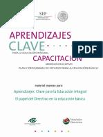 Curso Directivos.pdf