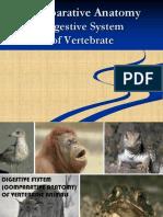 1. DIGESTIVE SYSTEM of VERTEBRATE-COMPARATIVE ANATOMY.ppt
