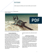 fact sheet- marine bio  1
