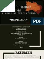 Micro-Curtiembre2-DIAPOS paulo.pptx