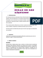DENSIDAD DE LOS LÍQUIDOS.docx