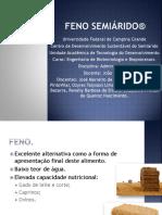 Apresentação 1 - Feno Semiárido®
