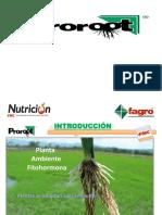 Proroot Arroz Finca El Progreso 2013- PDF
