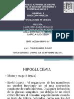 Hipoglucemia.pptx