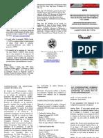 Panfleto configuracion Garmin.pdf