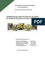INFORME de Ecologia Quebrada CARRIZALES 1 Docx