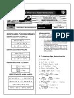 343878407 Identidades Trigonometricas PDF