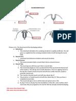 Neuroscience Note Set
