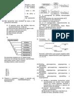 AP2 de Biologia - 2º Ano - II Período
