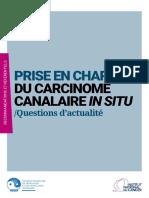 Prise en Charge Du Carcinome Canalaire in Situ – Questions d'Actualité – Rapport Intégral (Recommandations Et Référentiels)