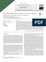 Micro Rna in Tumor Suppresor Protein