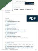 Tutorial de Visual Basic - Vectores y Matrices