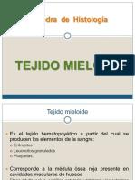 Tejido Mieloide Clase 1