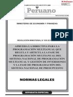 Directiva de Programacion Multianual 2019