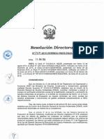 Resolucion Directoral 330 2015 Dgaa