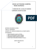 Universidad Autonoma Gabriel René Moreno