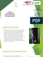 CUACHO SINTETICO POINT.pptx