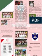El Futbol en El Perú