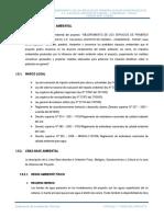 1.5.-Estudio-de-Impacto-Ambiental-Primeros-Auxilios-Calacala.docx
