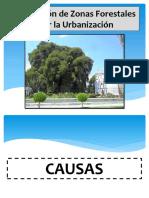1.- Clase 2 Formulacion de Proyectos
