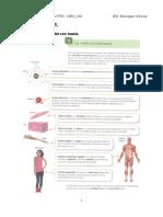 Dossier FPB1. CIÈN_UD 1. L'organització del cos humà.pdf