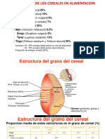 estructura y composicion quimica de los cereales.pptx